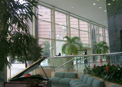 Lyric Center Uses Window Film to Improve Lobby