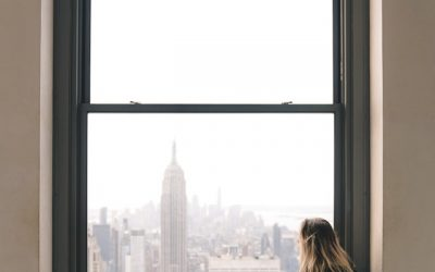 Fun Facts About Window Film